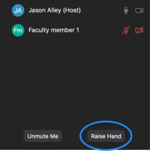 Raise hand button in Zoom