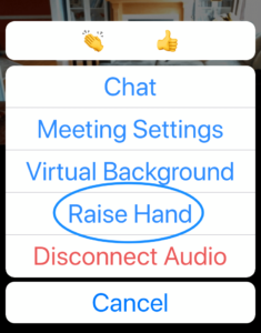 Raise hand button in Zoom mobile